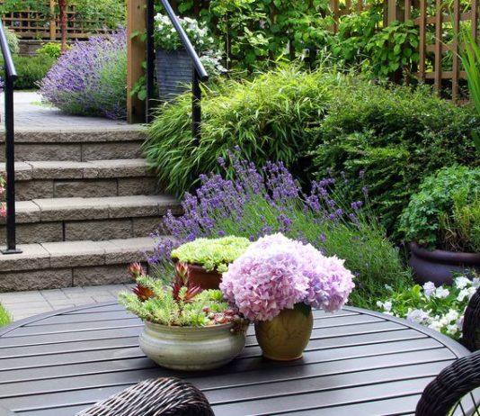евтини-идеи-за-градина