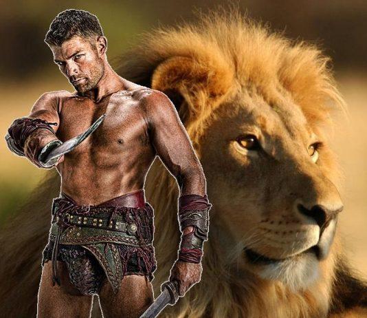 Мъж зодия Лъв: 7 Призначи за Влюбване и Ревсност